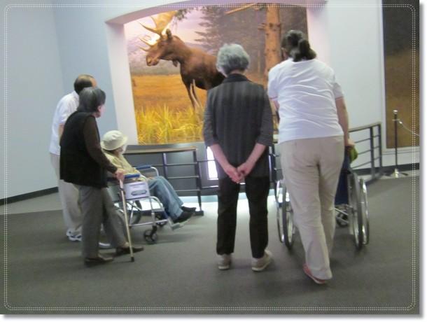 博物館見学