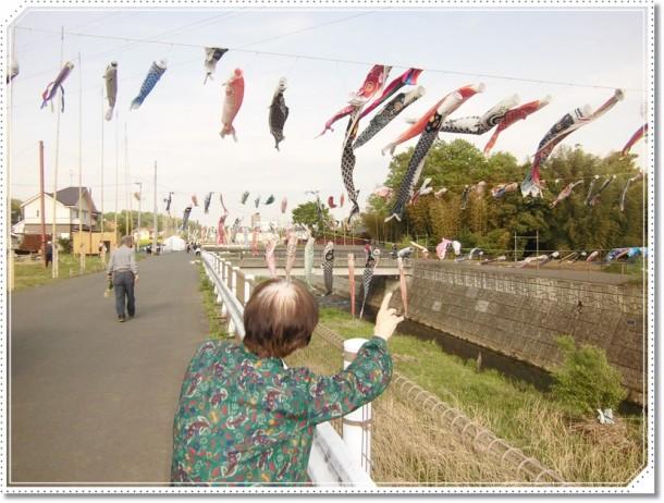 鶴見川の鯉のぼり