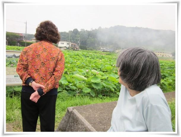 ぬくもりの皆さんで町田市風景100選