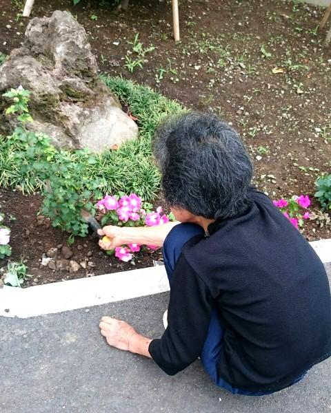 お花作りが大好きな、k様