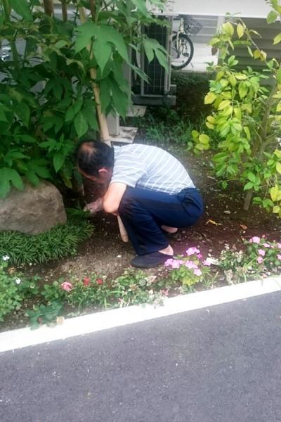 清住の杜町田のお庭の花壇